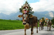 Traditioneller Gsieser Jahrmarkt und Almabtrieb