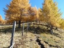 Beeindruckender Herbst im Gsiesertal