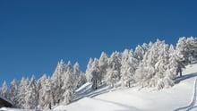 ...ihr Winterurlaub im Vinschgau