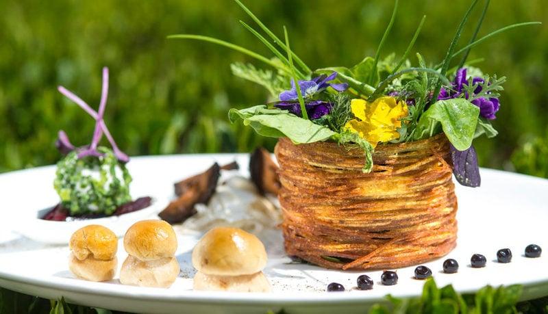 Die Vitalpina  Kräuterküche