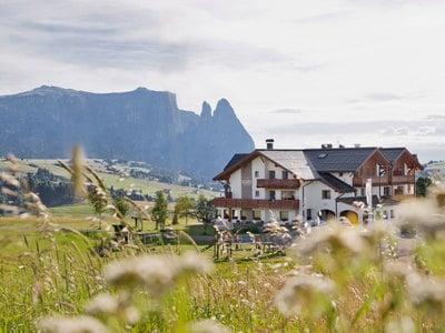 13 Vitalpina Hotels in hohen Lagen