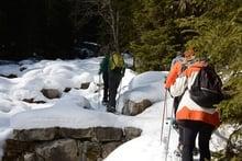 Escursione con le ciaspole guidata alle malghe Pfinn (ca. 2100m)