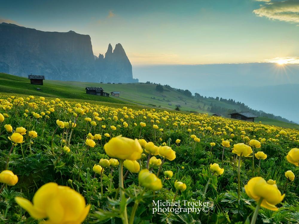 The Dolomites - magic summer