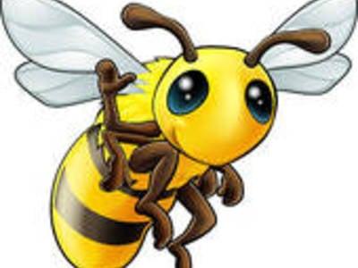 Il sentiero del miele