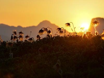 Hoch.Sommer der Dolomiten