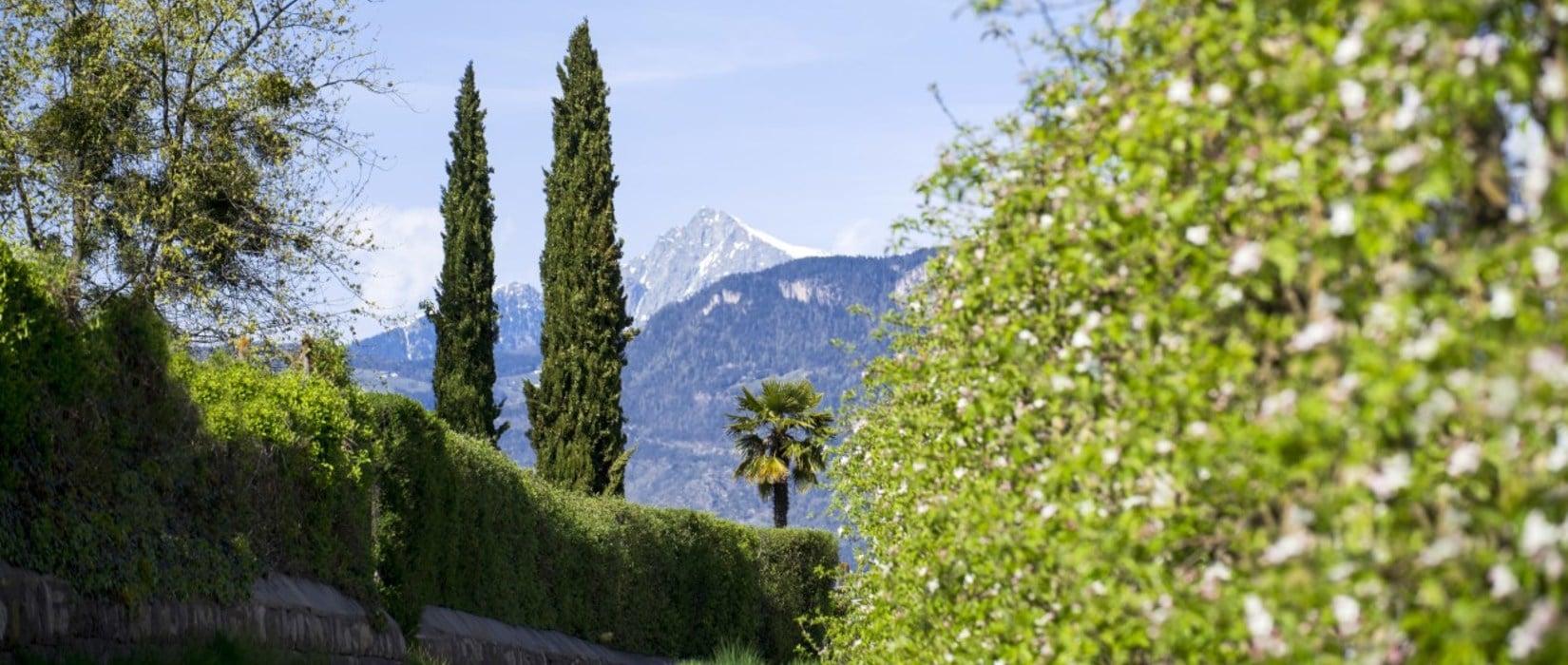Frühlingserwachen in Südtirol