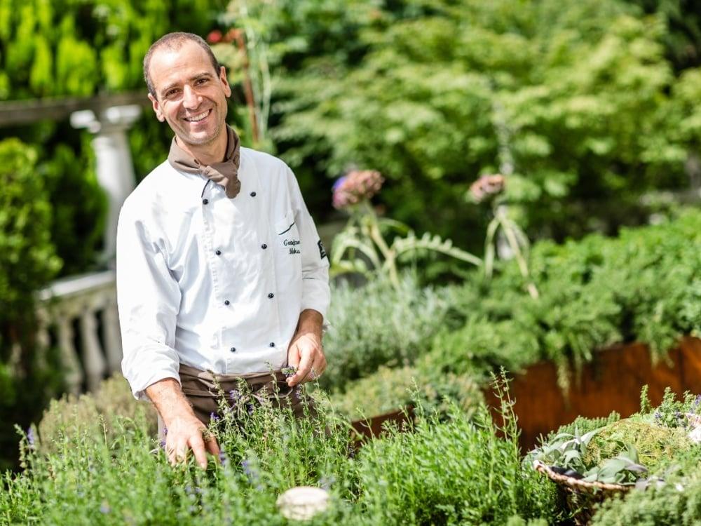 Unsere Gartenkräuter für Ihr Wohlbefinden