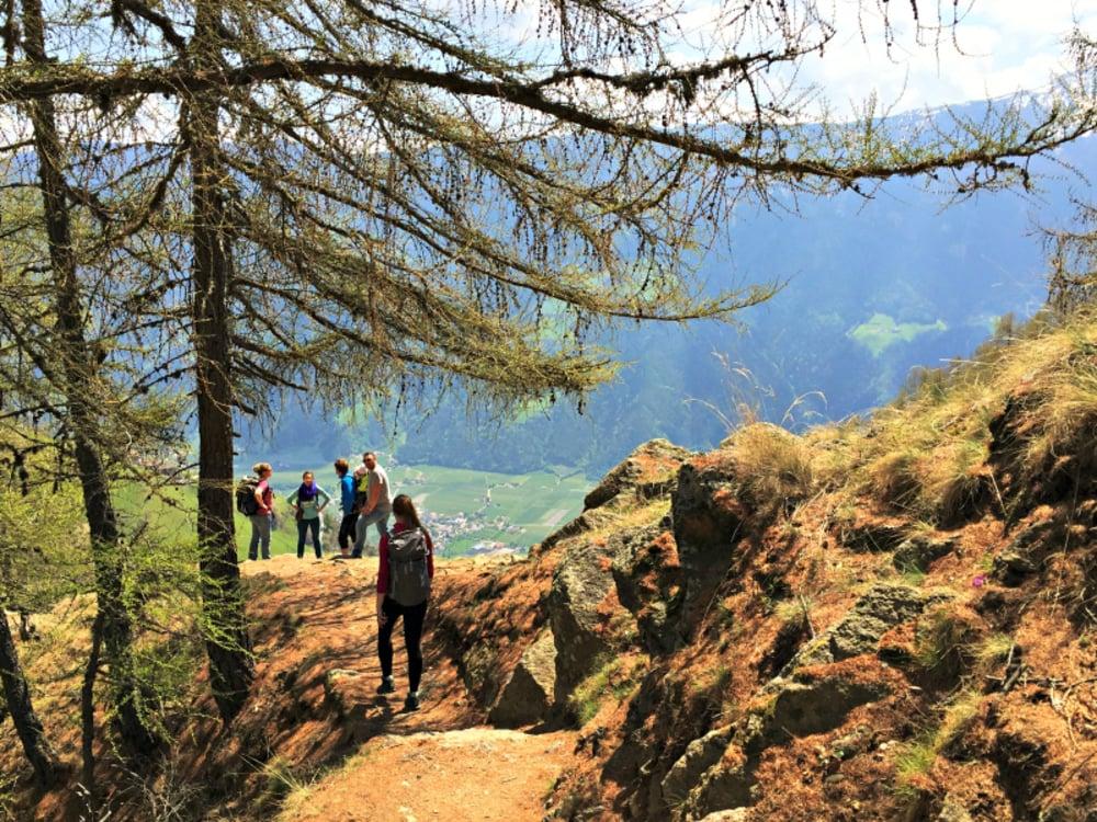 """The """"Meran High Altitude Trail"""""""