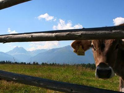 Giro sull'Alpe di Rodengo/Luson