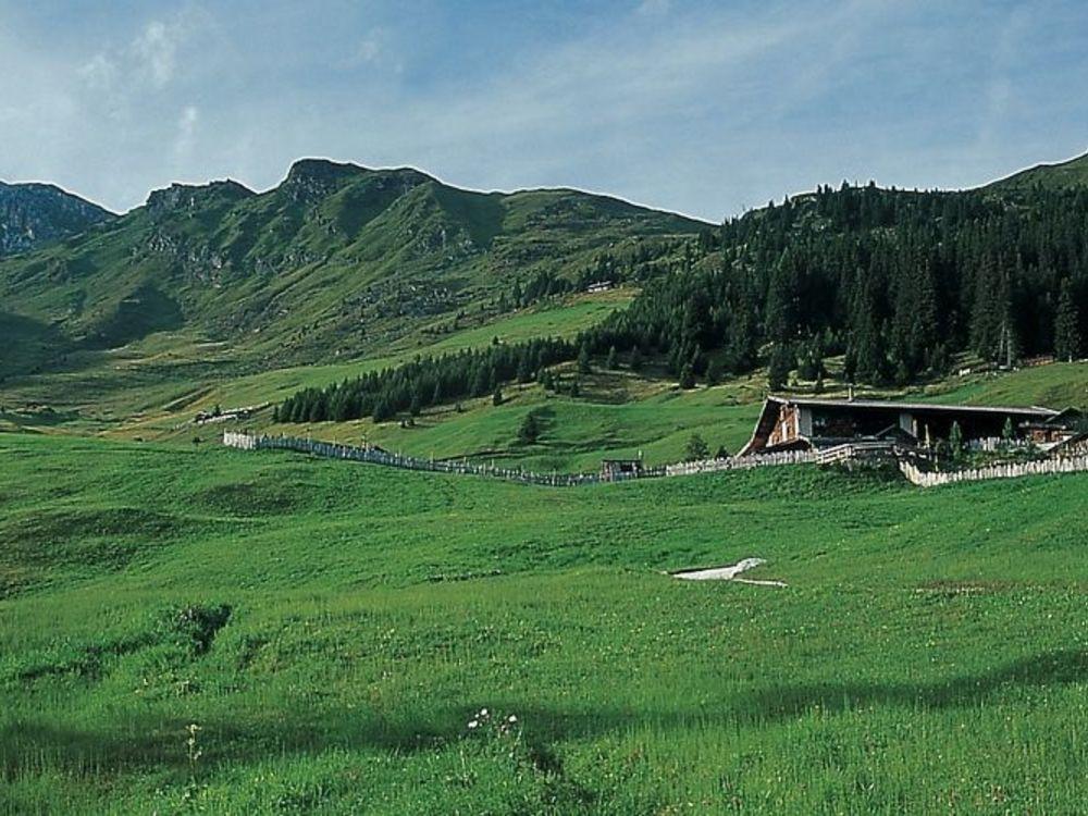 Escursione all'Alpe di Telves in Val Ridanna