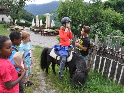 Bauernhof erleben mit unseren kleinen Gäste