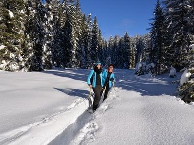 Pfösl's Winter- und Schneeschuhwanderservice