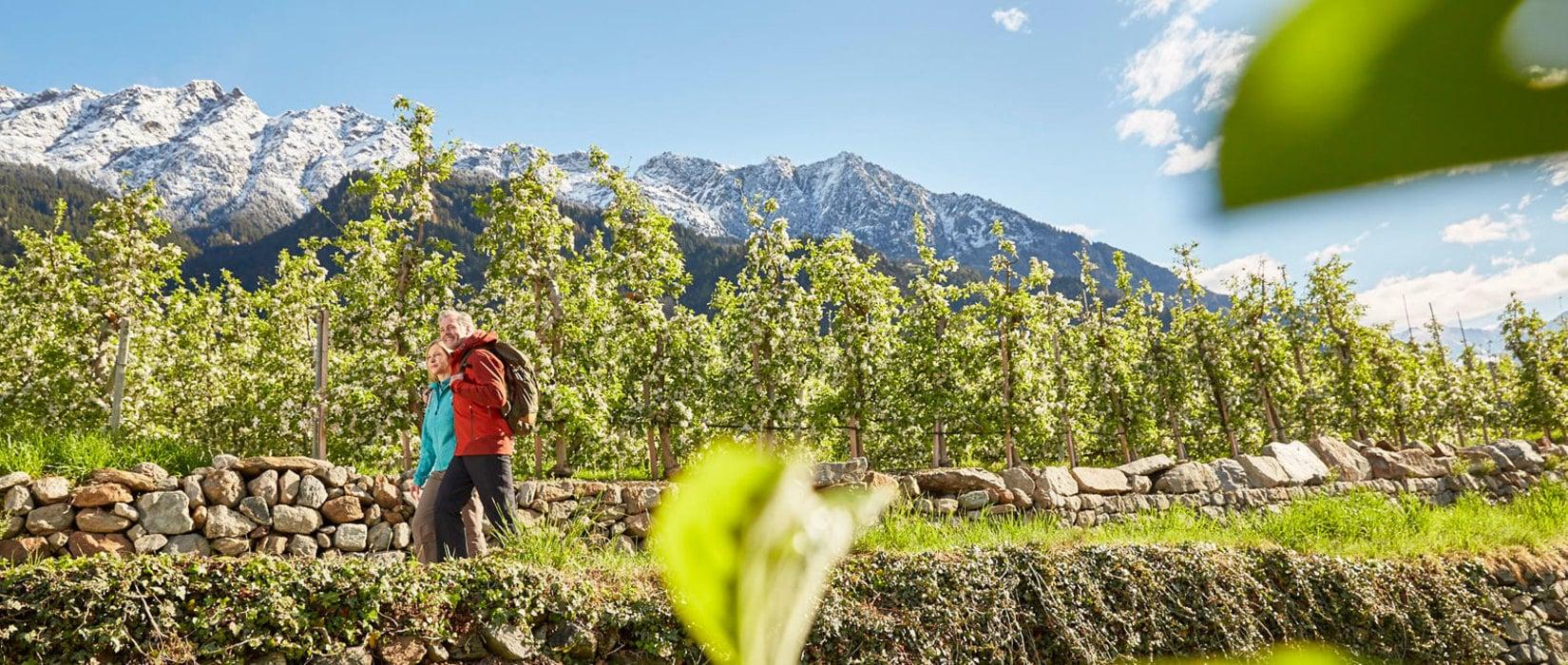 Frühlingsbeginn in Südtirol