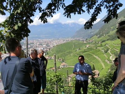 Weinexkursion zum Bioweingut Loacker in Bozen