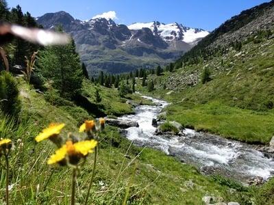Rinfresco puro nelle montagne...