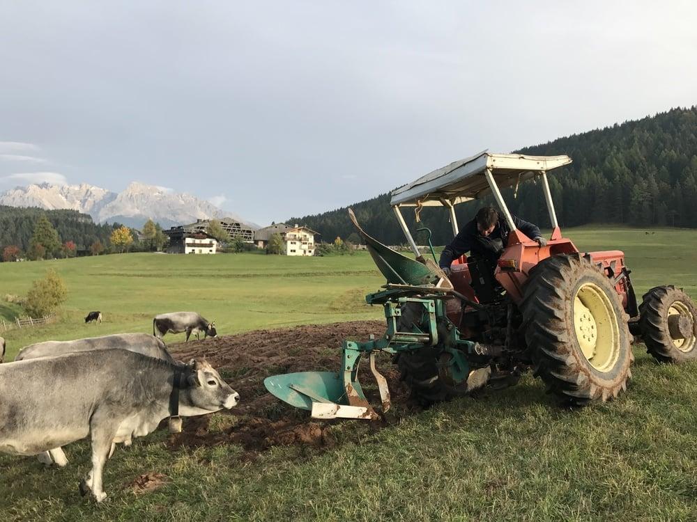 I lavori d'agricoltura stanno procedendo