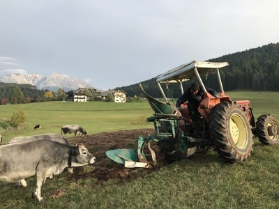 Preparations for agriculture are in full swing