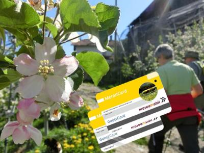 MeranCard - Carta vantaggi per le sue vacanze...