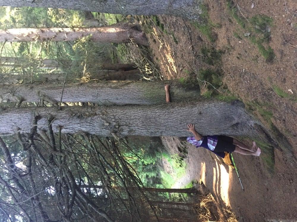 Waldbaden im Magdalenahof