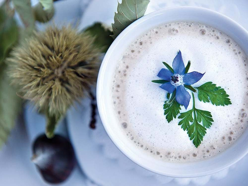 Vitalpina recipe: Chestnut soup with marjoram