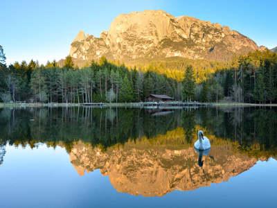 """Waldbaden """"Shinrin Yoku"""" Zurück zur Natur mit allen Sinnen"""
