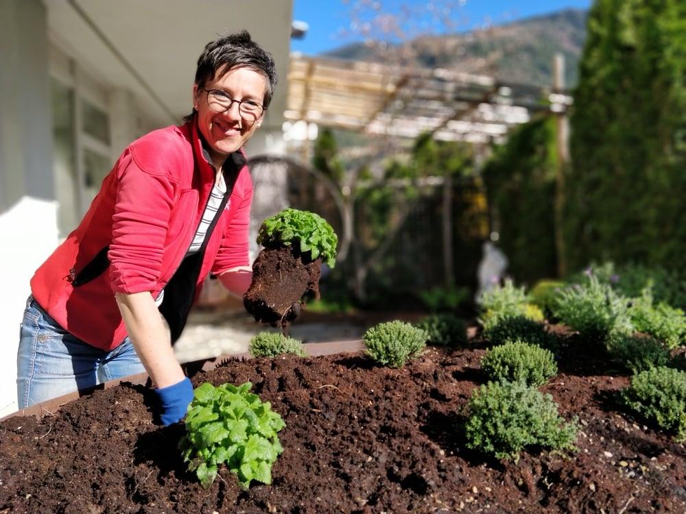 Il nostro orto di erbe è piantato...