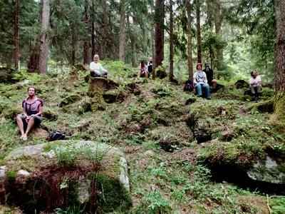 Den Wald sanft erleben...