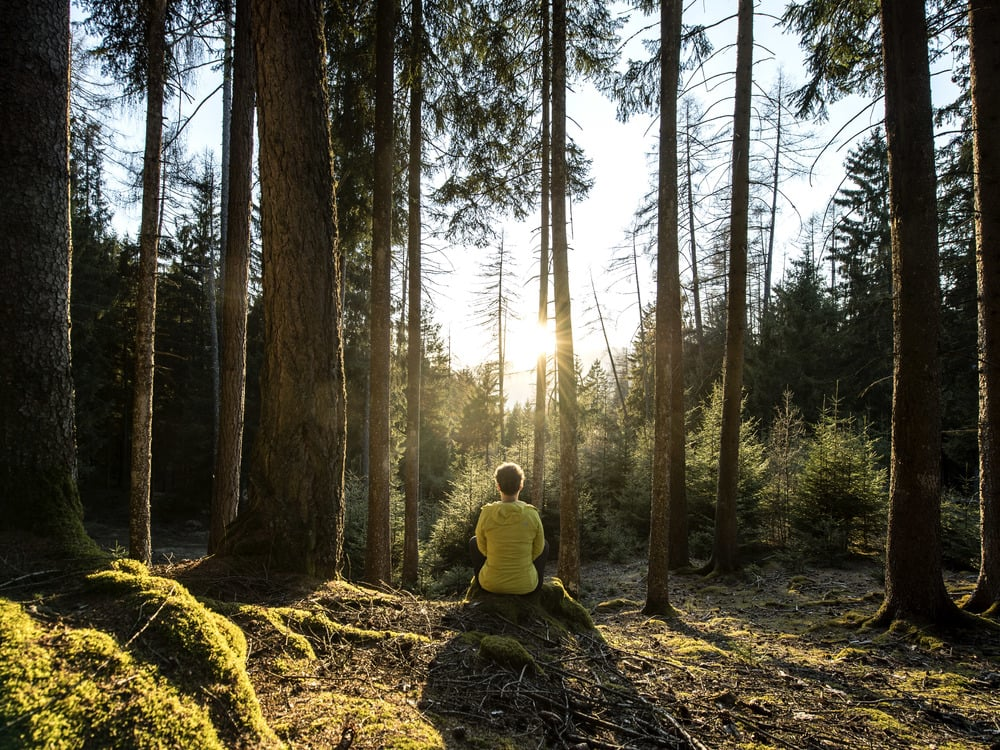 Wellness ath the feet of the Rosengarten mountain