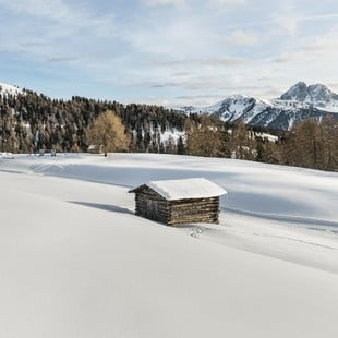 Vitalpina Hotels für den Winter