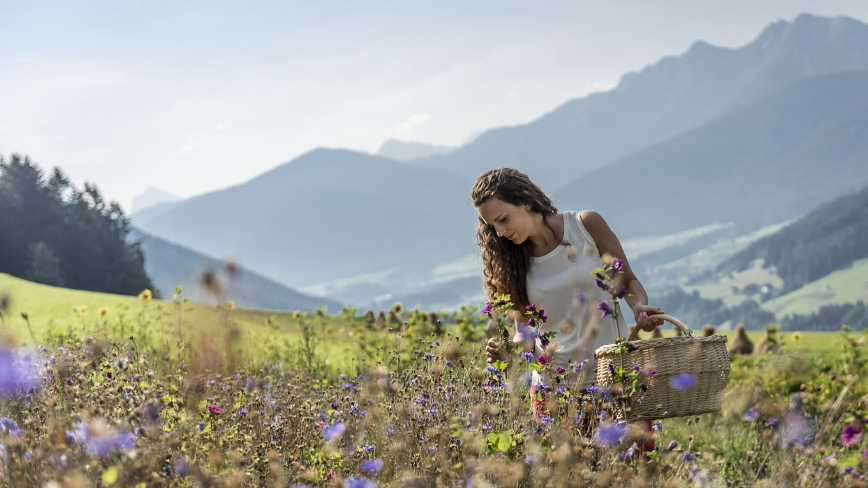 Die Natur ist ein riesengroßer Kräutergarten