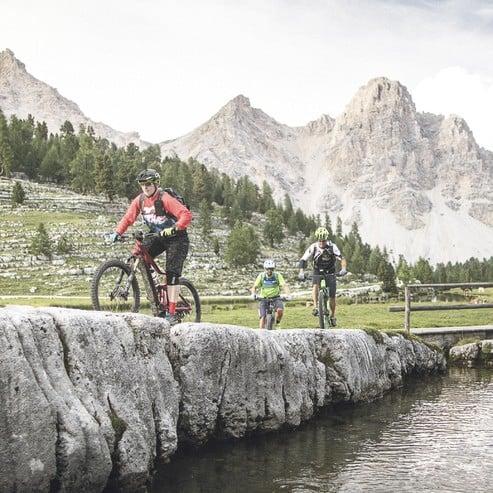 Geführte Biketouren & individuelle Beratung