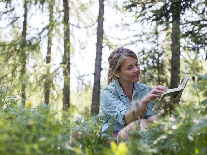 FOREST BATHING: A QUIET DATE WITH NATURE