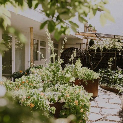 Cucina naturale con erbe della casa