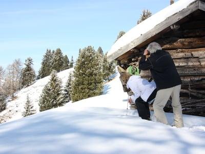 """""""Safari del camoscio"""" sull'Alpe di Siusi"""