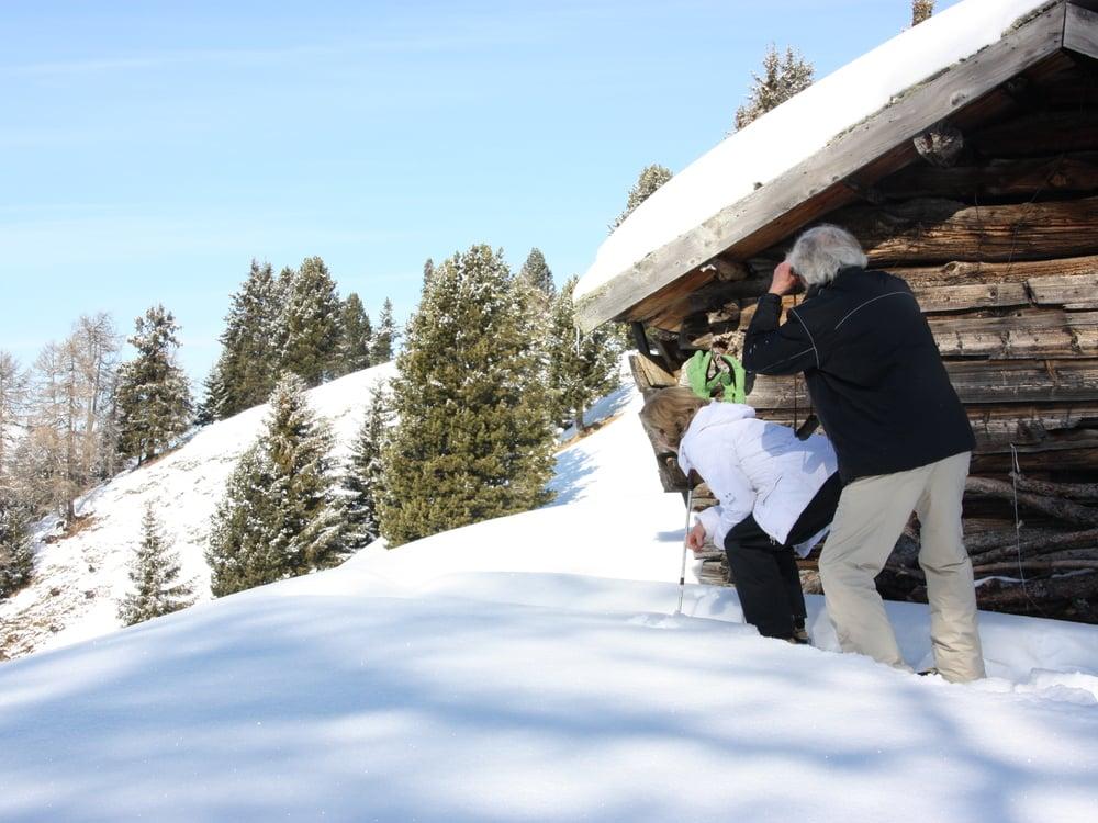 """Chamois safari"" with snow shoes on the Alpe di Siusi"