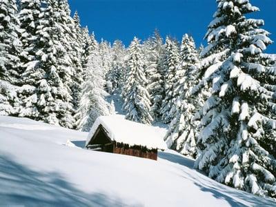 Fresh snow throughout the region...