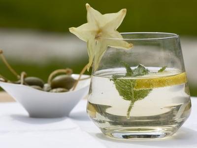 Bevanda rinfrescante alla melissa