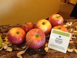 Südtiroler Äpfel-natürlich, gesund und innovativ