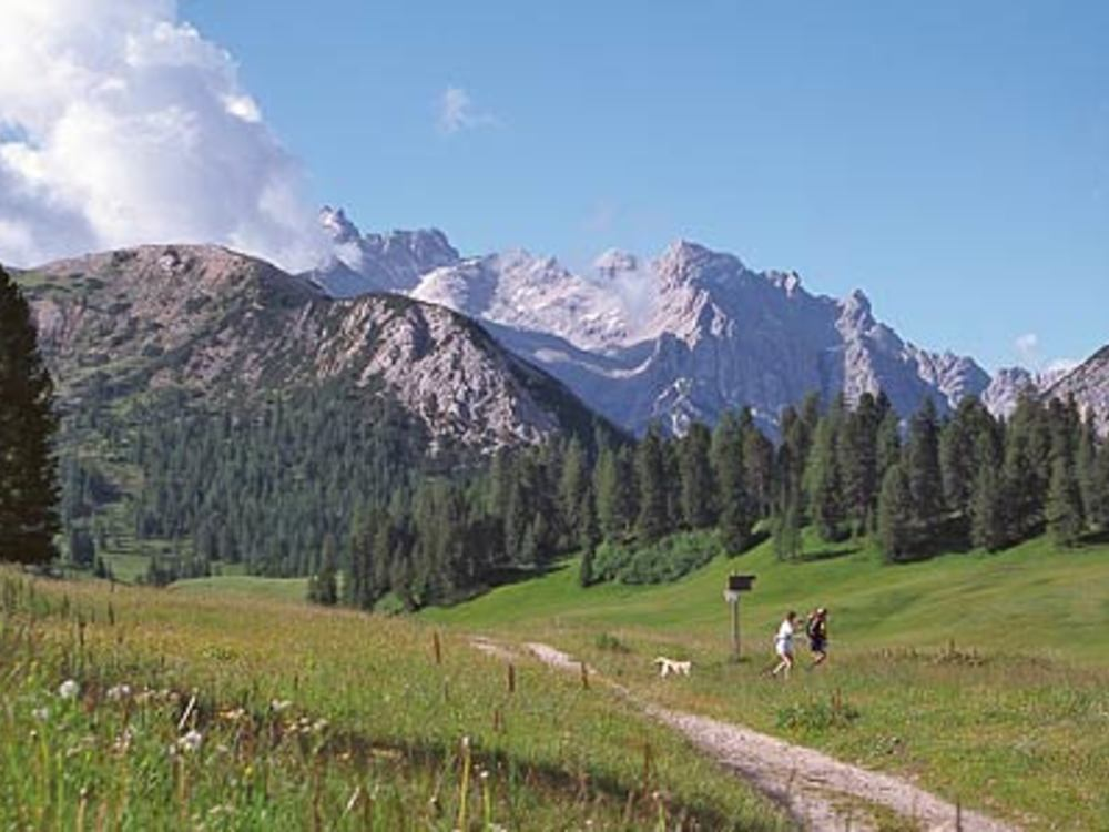 Hike to the Plätzwiese/Prato Piazza in Alta Pusteria Valley