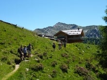 Unser Wandertipp im Gsiesertal: zum Almweg 2000