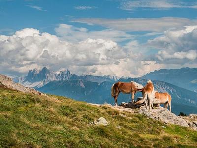 Geuss-Panoramawanderung