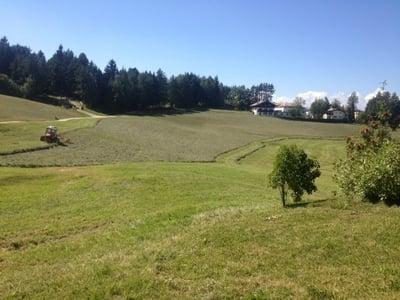 Südtiroler Bergheu