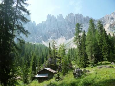 Wild- & Waldwoche auch im Wellnessbereich...