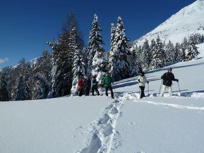Winterwanderung zur Castrin Alm mit Heinrich Gruber