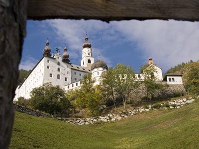 Höchstgelegener Weinberg Südtirols