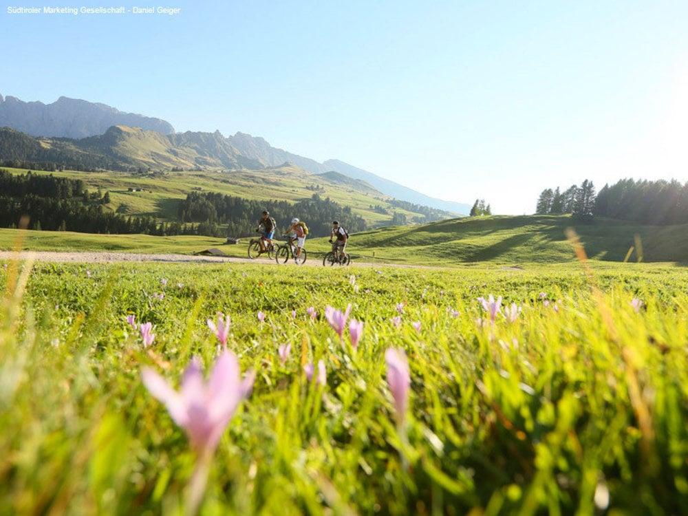 Biken, Wandern und mehr