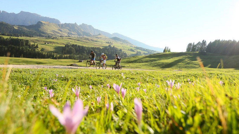 """Aktivität und Genuss """"Törggelen"""" in Südtirol"""
