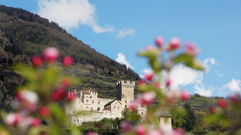 Aria di primavera al Das Gerstl -20%