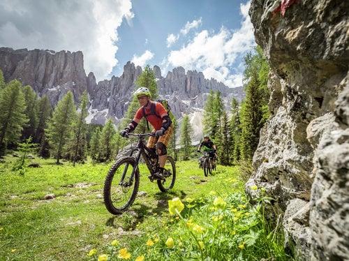 Hike & bike