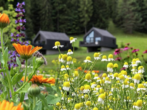 Springtime at Pfösl 7=6